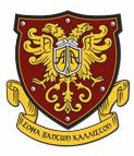 American Academy лого