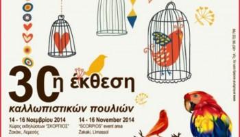 30-я выставка-конкурс декоративных птиц