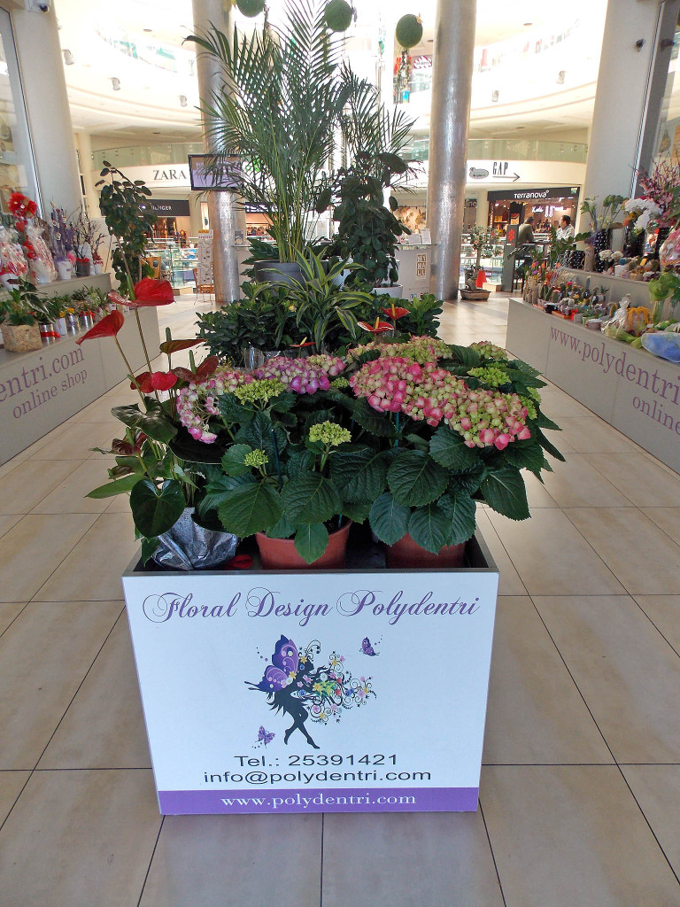 Polydentri Flower Shop