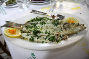 Gold Lemon fish
