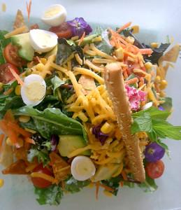 Muse Salad