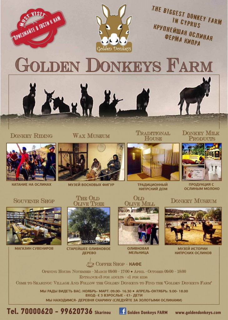 Golden Donkeys Farm