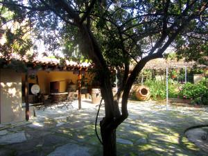 the Cyprus wine museum