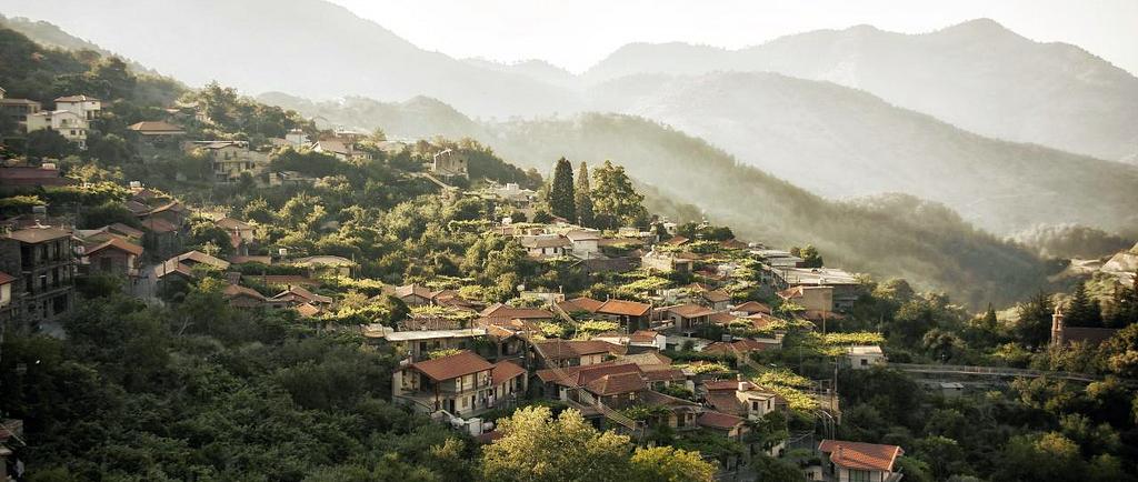 Деревня Алона