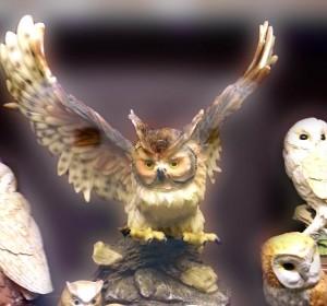 Музей совы