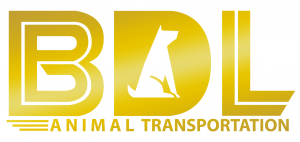 BDL animal transportation