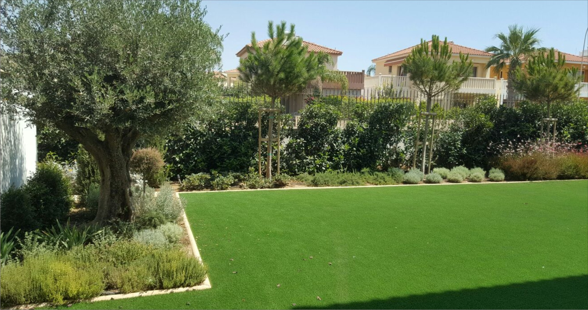 T p green architecture landscape design and consulting for Green garden designs