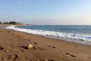 Akamas Lara Beach - Cyprus