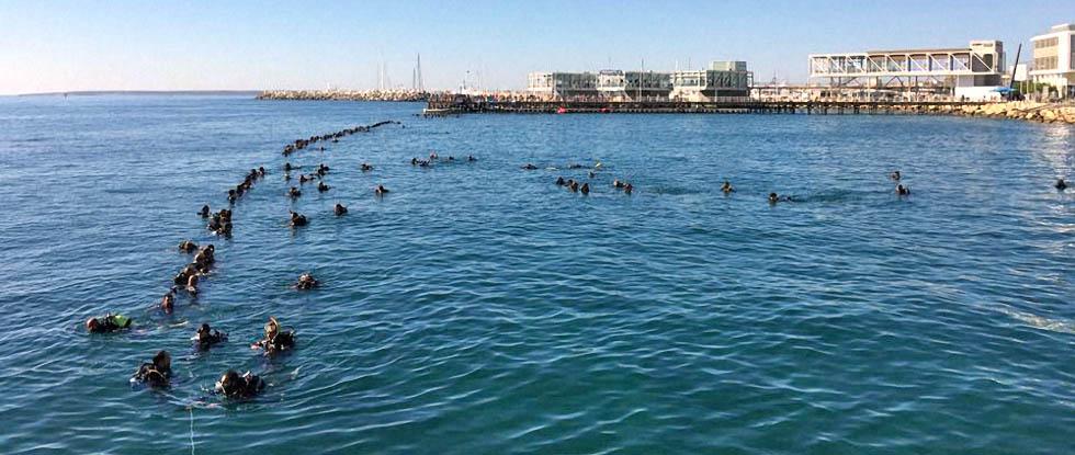 Divers Guinness Limassol