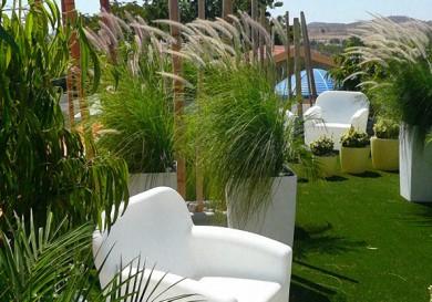 Solomou Garden Centre Cyprus