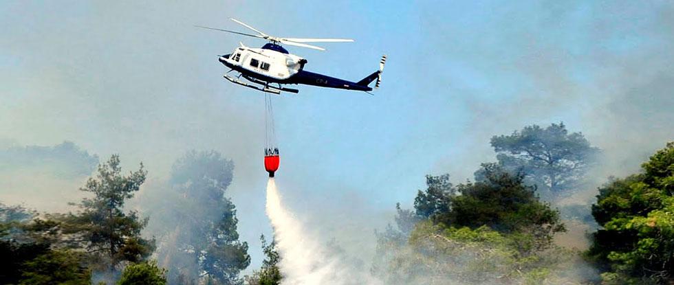Пожар в лесах Кипра