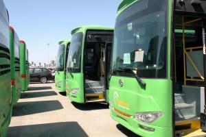 Bus Cyprus