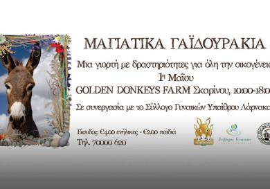 Фестиваль осликов Golden Donkeys