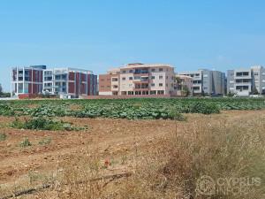 Field in Limassol Cyprus