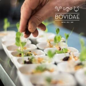 bovidae-photos-for-posting-10_17_4