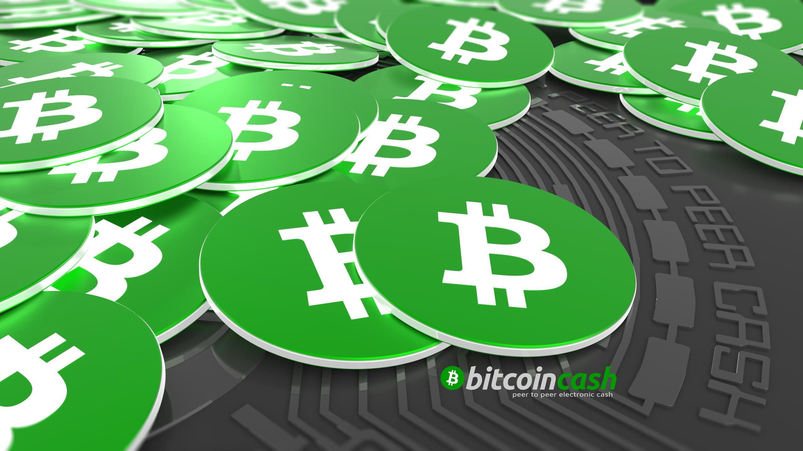 bitcoin-cash-price-rises