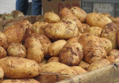 potatoes fuel