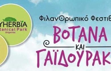 festival-trav-i-oslikov