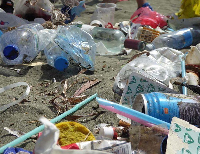 zapret-na-odnorazovye-plastikovye-iz